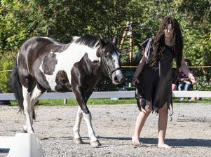 I historieresans början var hästen ett bytesdjur.