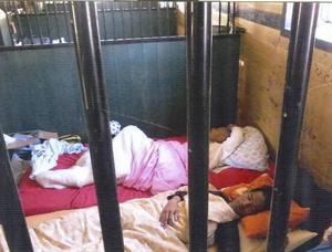 Kambodjanerna fick sova i ett häststall under tiden de arbetade för företaget och fick inte ut lön.