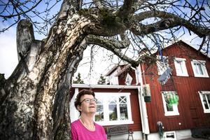 Birgitta Ackum kan höra naturljud igen.