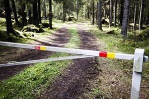 Vägen leder mot Taskberget, ett naturreservat som länsstyrelsen tillfälligt har stängt för allmänheten.