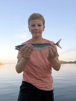 Fiske i solnedgången. Erik hade pratat om att han ville fiska makrill ända sedan vi bestämde att vi skulle till Västkusten på semestern.  Foto: Helen Lundmark Johansson, Hallstahammar