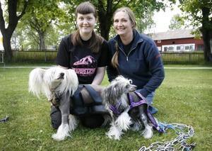 Sofia och Sonja Engberg med sina kinesiska nakenhundar Morris och Bosse ska tävla i SM i weightpull. Tävlingen innebär att hundarna ska dra så tungt som möjligt på kortast möjliga tid.