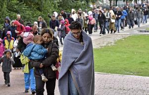 Europas största flyktingkatastrof sedan andra världskriget möts av hat och hån från extremisterna.