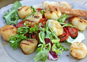 Lyxiga pilgrimsmusslor är utmärkta att grilla. Servera gärna med smakrik sallad och några droppar olivolja.    Foto: Dan Strandqvist