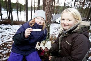 Elin Persson och Ronja Silfverin har letat upp föremål i skogen som kan beskrivas med orden kall och varm.