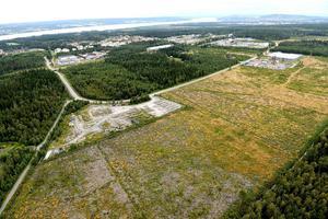 Ett industriområde med obebyggd mark i Torvalla som är påtänkt för elintensiv industri. För nya typer av tillverkningsprocesser är målet att ha förberedda områden med tillstånd och annat klart. Foto: Östersund kommun