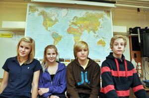"""SLUTTÄVLAT. Niondeklassarna Eva Thomsson, Wilma Berglund, Joel Thomsson och David Lönnberg nådde inte ända fram i NO-tävlingen """"Naturvetarmästarna""""."""