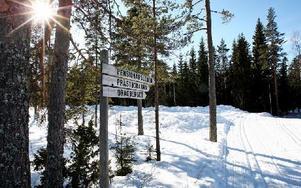 Skidspåren i Gyllbergen är underbart bra, säger alla åkare som DD möter vid värmestugorna. Foto: Johnny Fredborg