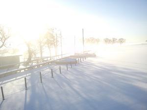 Morgonen på fredag den 17 feb vad det stark sol och dimma nere vid Svartån.