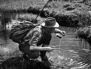 FOTO: HANS LIDMANSommar vid Svartån, som skildras i många av Lidmans fiskeböcker.