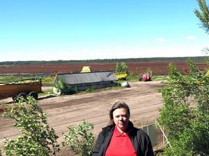 Regina Jönsson, prospekteringschef på Neova och säger att torv är bra. Andra är inte lika positiva och menar att utsläppen är farliga samt att naturen utarmas av brytningen. I bakgrunden syns det som området där torven bryts.