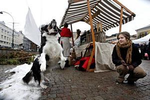 Lekglada hunden Molly  följer alltid med husse Tord Paulsson, ostförsäljare från Sveg, på alla marknader. Här har hon hittat en lekkamrat i Maria Markusson.