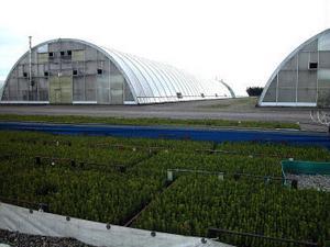 Bogrundets plantskola hoppade av projektet.