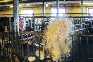 Kicki Bååth jobbar på en mjölkgård i Hänsätter, Vallsta.