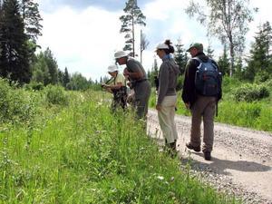 Fem ekoturistande engelsmän besökte på kommersiell väg för första gången fjärilsvägen vid Grinduga by under lördagen.  FOTO: Göran Sjöberg