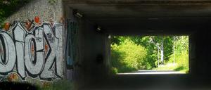 Var på en cykeltur och cyklade från Lögarängen mot Bäckby. Tyckte att det var jättevackert med graffitin på ena sidan av den mörka tunneln och det vackra sommarlandskapet på den andra sidan.