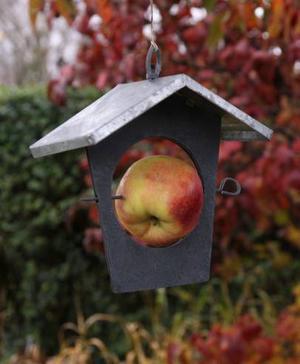 Spetsa en talgboll eller ett äpple och fågelmaten är serverad i denna skapelse av zink och trä. Priset är 99 kronor.
