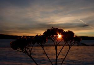 Solnedgång i Livsdal i Norberg