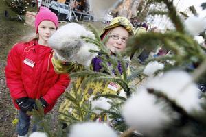 Viola Åkermo, 12 år och från Oviken, rättade till ett av de ullhjärtan hon tovat. Den jämnåriga bästisen Lina Berggren gillade granen och lade sin röst för den.