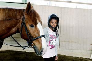 När ridlektionen är slut så leder Yosan in hästen Picasso istallet. Där han skall bli ompysslad.