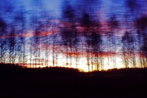 Vid hemfärden från tennissegern i Gävle (VTV) den 16 november satt jag i baksätet och fascinerades av solnedgången. Jag tog upp mobilen och riktade dess kamera mot den trädridå som svischade förbi i 80 km/h. Då exponeringstiden var 1/30 sekund gav det en konstnärlig (?) touch åt bilden.