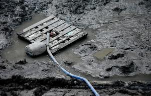 Bottenskiktet med ett tjockt lager lera, dy och sediment.