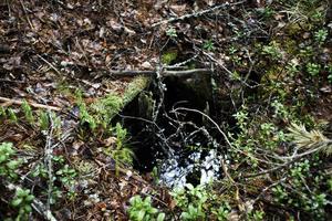 Det ser ut som en brunn, men efter överläggningar kom arkeologerna fram till att det nog var en tjärränna i stället.