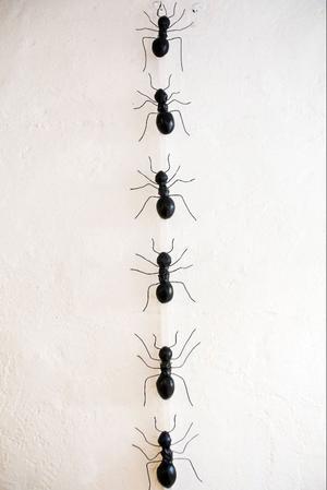 Linda Svedberg har skapat de här stora myrorna som visas för allmänheten från och med i morgon.