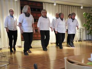 Linedance stod också på programmet vid SPF Tuna-Säters aprilmöte.