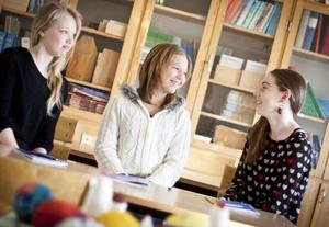 En bra novell innehåller mycket beskrivningar tycker Mathilda Gustavsson, Alicia Johansson och Alma Swärdh.