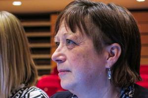 Karin Thomasson (MP) jämförde Sverigedemokraten Peter Johanssons rädsla med rädslan hos människor i Syrien.
