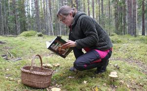En svampbok är alltid bra att ha nära till hands ute i skogen.