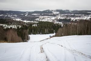 Vetten Alpina i Liden får drygt 150 000 kronor.