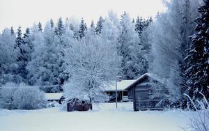 En kall morgon i norra Västmanland ca 30 grader minus vid detta tillfälle..