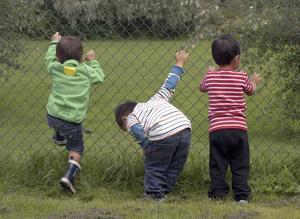 Efter en dag på parken zoo hade barnen tröttnat på djuren och ville leka på ängen istället.