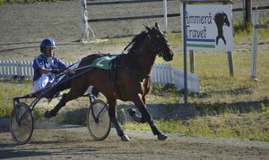 Wilshere och Jonas Walje vann lopp 4.