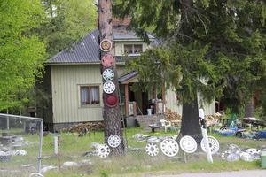 Så här ser det ut i dag på Ronnie Lundqvist trädgård som han berättar en gång blev utsedd till Sveriges näst fulaste. Det finns till synes ingen anledning att betvivla honom.