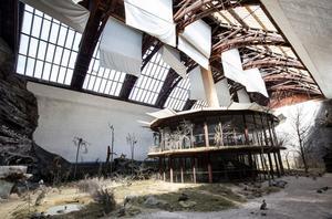 Biologiska muséet på Djurgården ska stängas för renovering efter sommaren. Det är oklart när och om det öppnar för allmänheten igen. Allt ljus i den stora montern är naturligt och kommer från fönstren i taket. Målningarna på väggarna har gjorts av Bruno Liljefors.