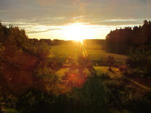Solen är just på väg upp vid 6-tiden en augustimorgon utanför vårtfönster i Bovallen. Det blir som en vacker målning med stort djup i bilden,både i verkligheten och på fotot...