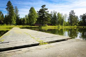 Verksamheten i Önsjön är nerlagd sedan ett par år och några eventuellt nya ägare skulle behöva satsa en rejäl slant på att rusta upp badplatsen.