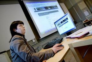 på nätet. Ann-Sofie Johansson-Nyberg har lett arbetet med att lägga ut kommunens diarium på internet.