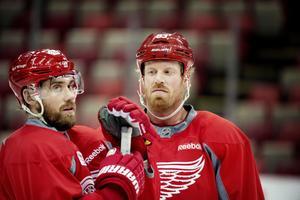 Zetterberg och Johan Franzén har varit lagkamrater i Detroit Red Wings i många år. Men efter fem dokumenterade hjärnskakningar talar det mesta för att karriären är över för svensken som kallas