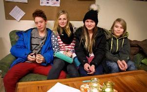 Gabriel Nilsson Saldias, 15 år, Frida Lekander, 14, Emelie Hillring, 14, och Albin Gryting, 15, var i olika grupper och pratade om resor, fest och Lan i Rosa Huset. Foto: Jennie-Lie Kjörnsberg