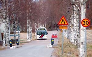 Alléer av Långgattu-typ omfattas av ett miljöbalksreglerat biotopskydd och får inte skadas. Men här har ett antal björkar skadats. Foto: Kent Olsson/DT