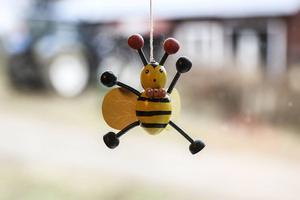 Bina har samlat sig i en klump i bikuporna, med drottningen längst in. Närmare än så här kom inte eleverna några levande bin under studiebesöket.