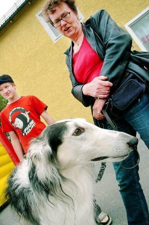 """Familjens Myhrs Borzoi Arinjen deltog i Bergs hundklubbs rashundsparad. """"Det finns inte så många Borzoi här. Det är en fantastisk hund med sina två meter från svansen till nosspetsen"""", berättar Jenny Myhr."""