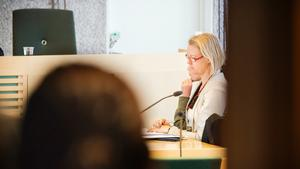 Bedragarbloggerskan dömdes i Södertälje tingsrätt så sent som i maj.