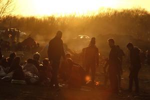 Flyktingar samlade på ett fält nära Edirne, vid gränsen mellan Turkiet och Grekland. Tusentals migranter försöker att ta sig över gränsen, in i Grekland och EU. Foto: Emrah Gurel/AP