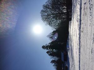 En underbar söndag på Lötcamping i Strängnäs. Först strålande sol och i nästa stund fullt snöfall. Foto: Peter Albihn.