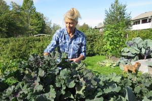 Pia Mosten odlar flera olika sorters kål. Tack vare att hon skyddade sådderna med nät lyckades hon minimera sommarens angrepp av kålmal.